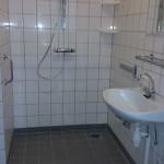 DH-badkamer-tegel